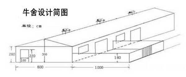 养牛场设计图(整体图)