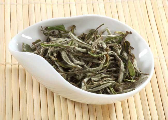 白茶是什么茶