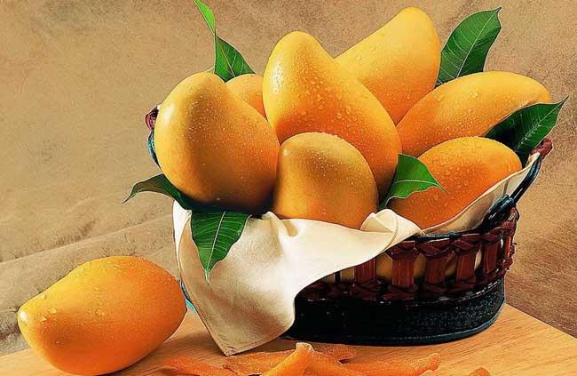 芒果的功效与作用