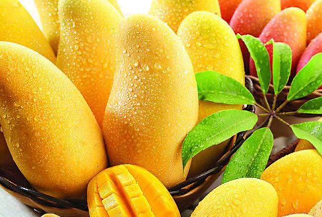 吃芒果的好处和坏处
