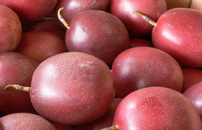 百香果的种植条件和种植成本