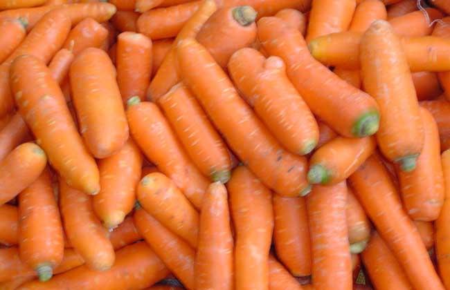 胡萝卜的减肥方法