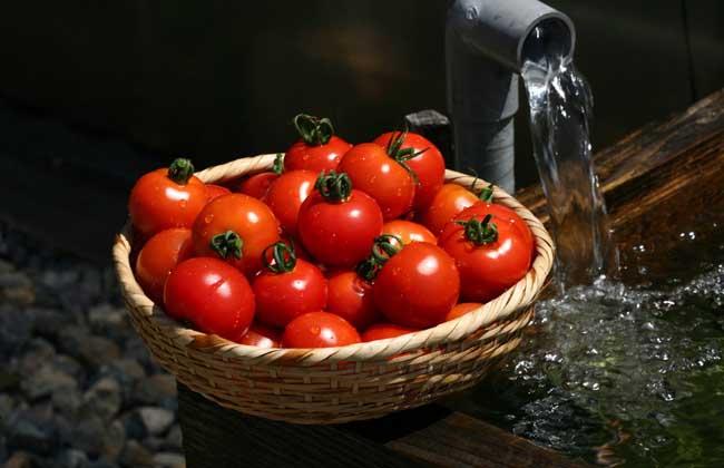 空腹吃西红柿好不好