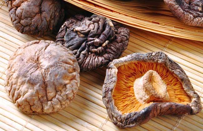 香菇和什么一起吃好?