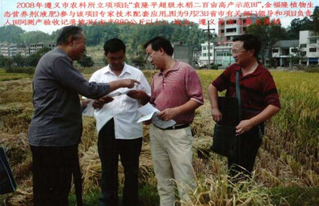 供应金福隆植物生态营养剂(液肥)