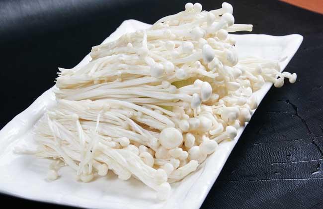 金针菇的品种