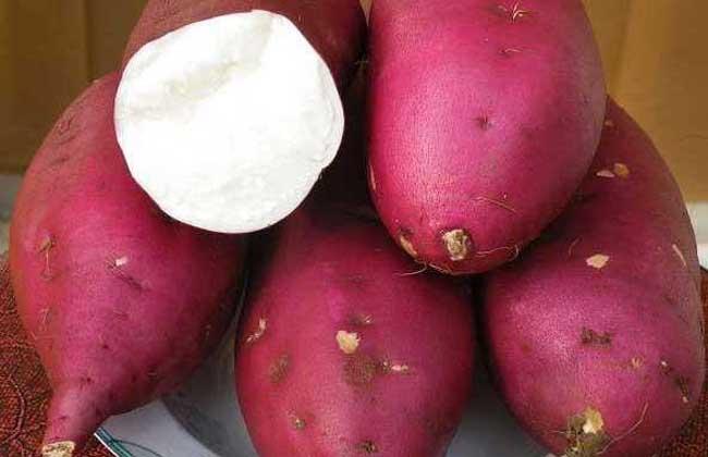 红薯不能和什么一起吃?