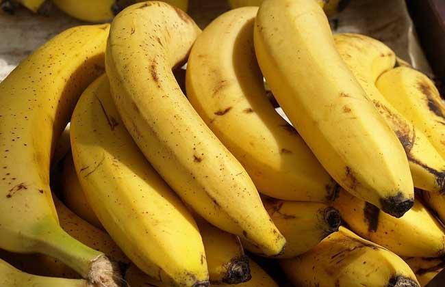 吃香蕉会不会长胖