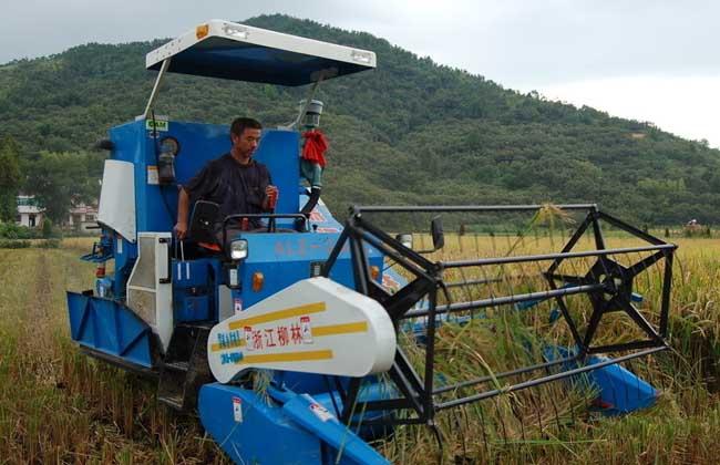 农业种植项目补贴