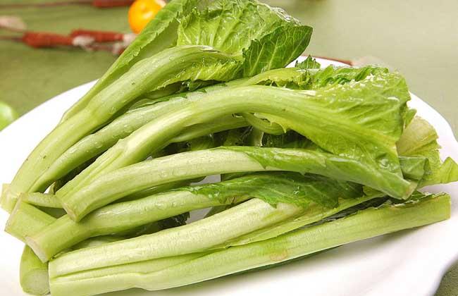 芥菜的营养价值