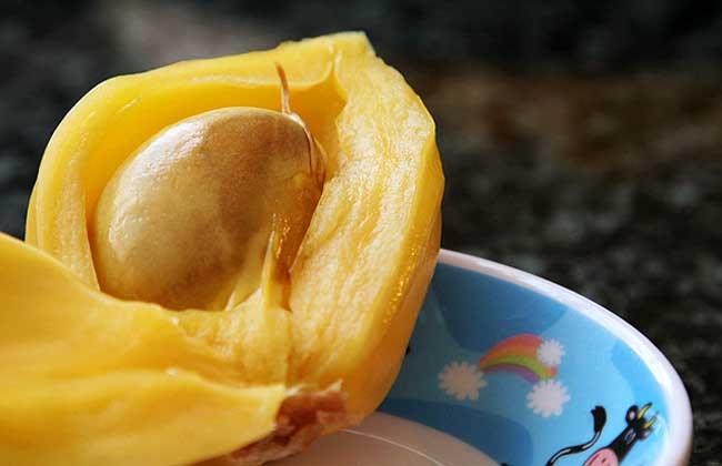 孕妇可以吃菠萝蜜吗