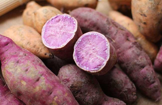 早餐吃红薯减肥吗?