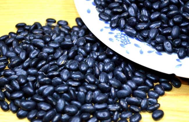 黑豆泡醋能减肥吗