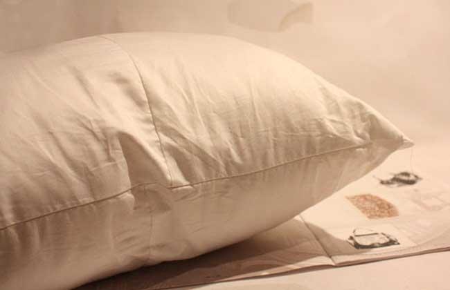 床上有跳蚤怎么办