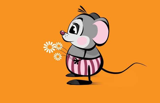 属鼠的属相婚配表