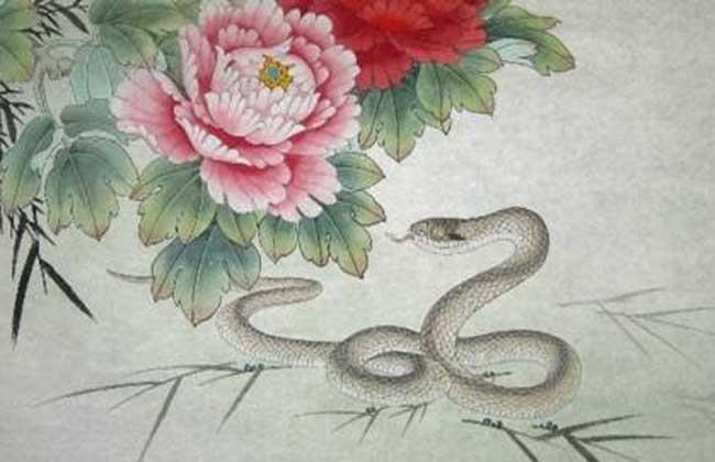 属蛇的和什么属相最配