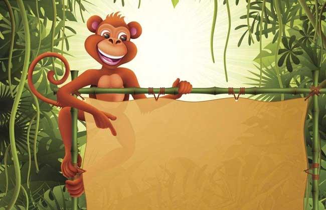 属猴的年份