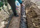 常见果树施肥方法