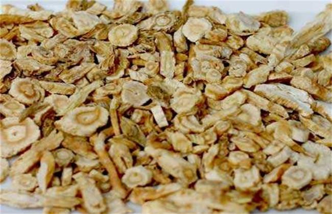 沙参多少钱一斤