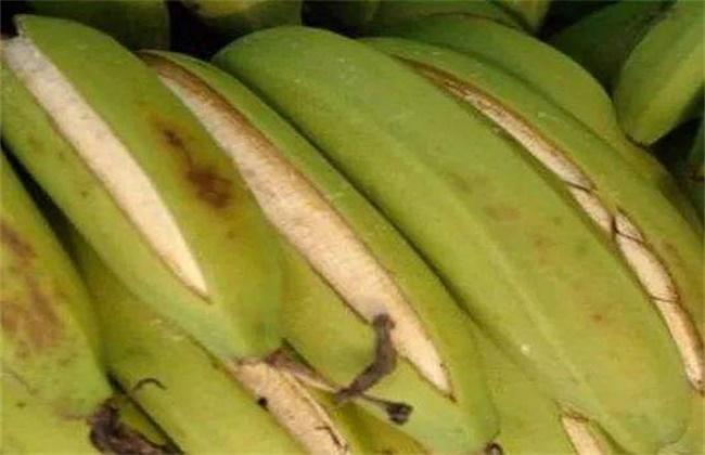 香蕉裂果的预防措施