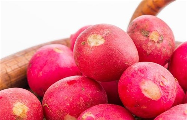 樱桃萝卜多少钱一斤