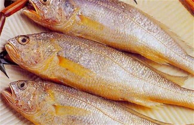 小黄鱼多少钱一斤