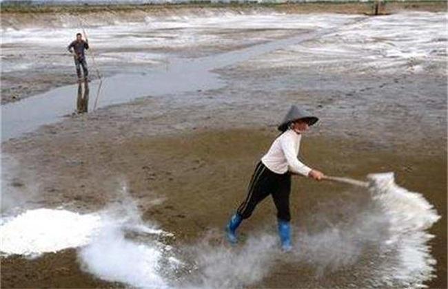 鱼塘 清塘方法 消毒方法