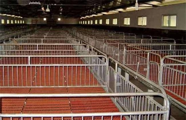 养猪场无害化处理制度