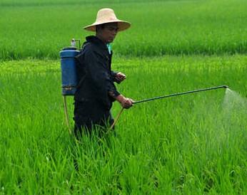 农药的科学施用技术