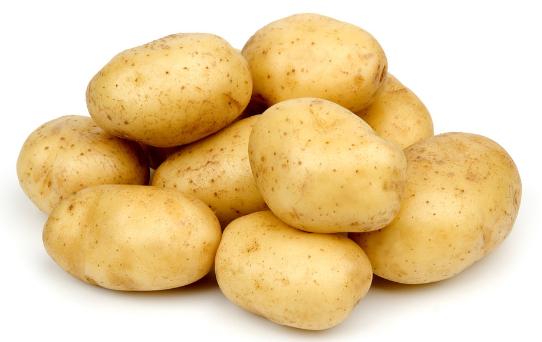 马铃薯高产栽培种植技术