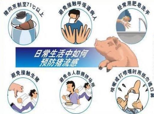 冬季猪流感的治疗方法