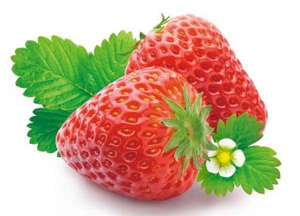 草莓的营养价值