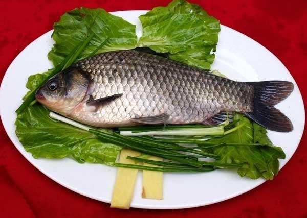鲫鱼的营养价值
