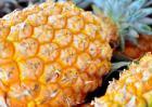 孕妇可以吃菠萝吗?