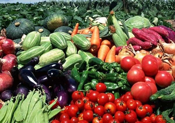 怎样减轻农药残留的危害?