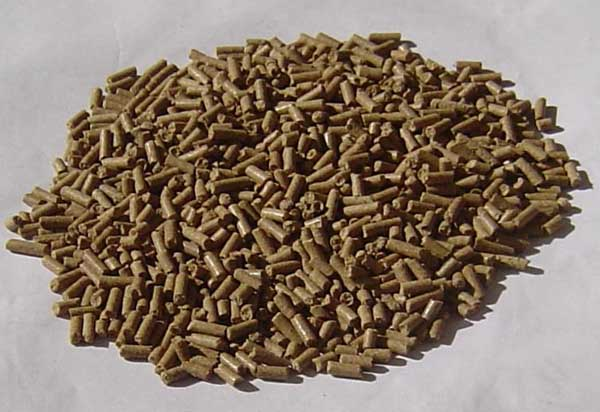 常见的富含淀粉的饲料有哪些