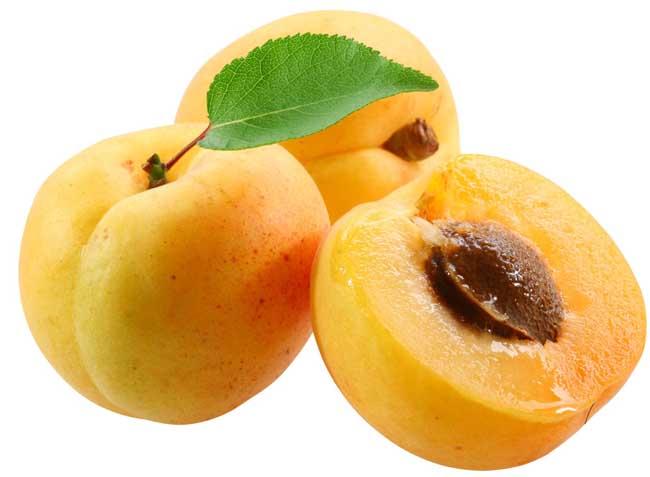 孕妇能吃杏吗