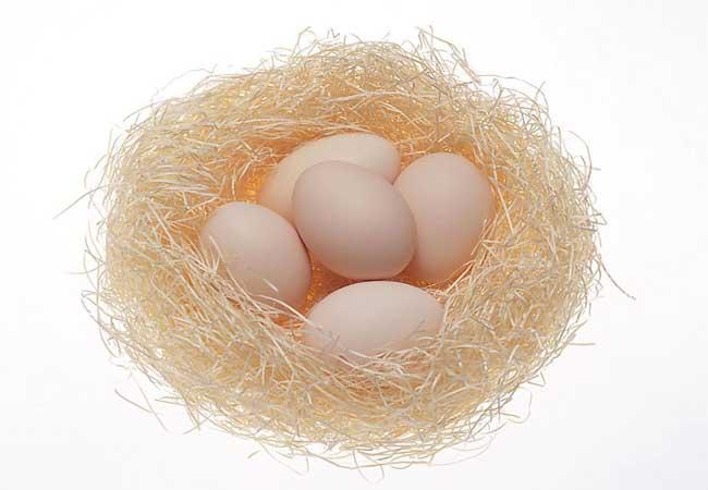 贵州鸡蛋市场价格