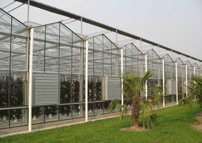 温室大棚的建设技巧