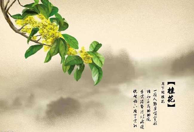 关于描写桂花的古诗词有哪些?