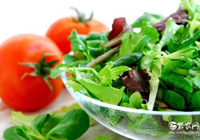 蔬菜营养价值