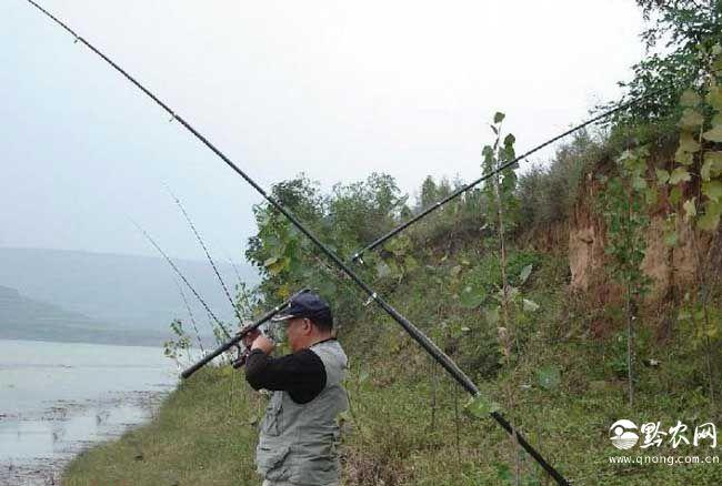 冬季钓鱼调漂技巧有哪些?
