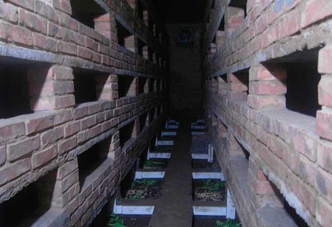 土元养殖技术