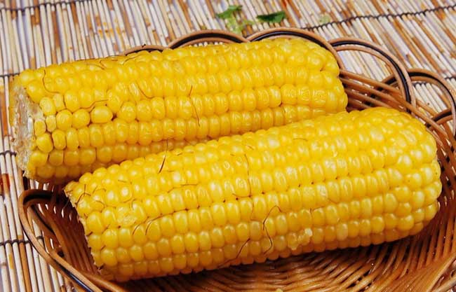 玉米的营养价值及功效与作用