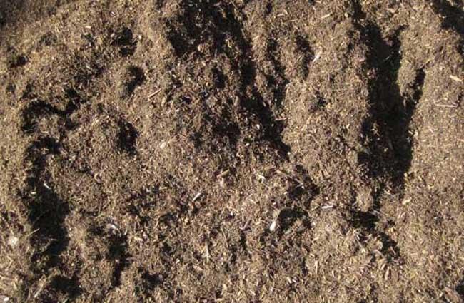 化肥与农家肥混合使用的好处