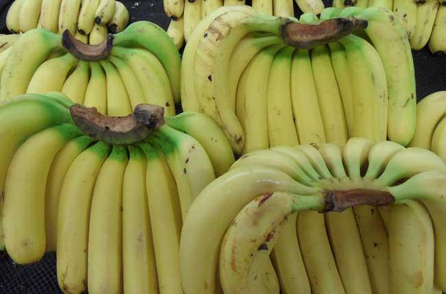 香蕉的副作用