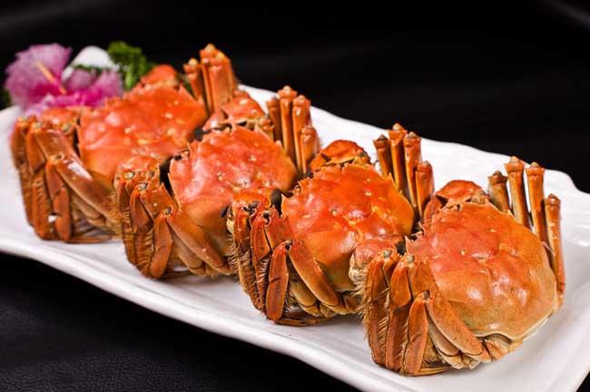 螃蟹的营养价值