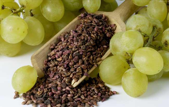 葡萄籽的功效与作用