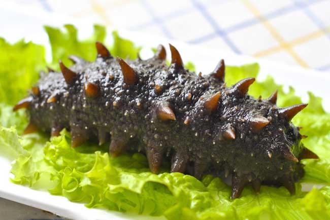 海参的食用方法