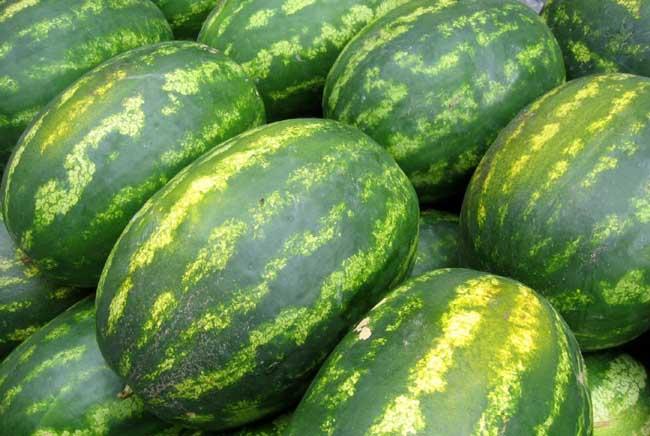 哪些人不能吃西瓜